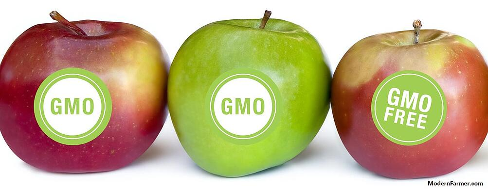 GMO_Labels.jpg