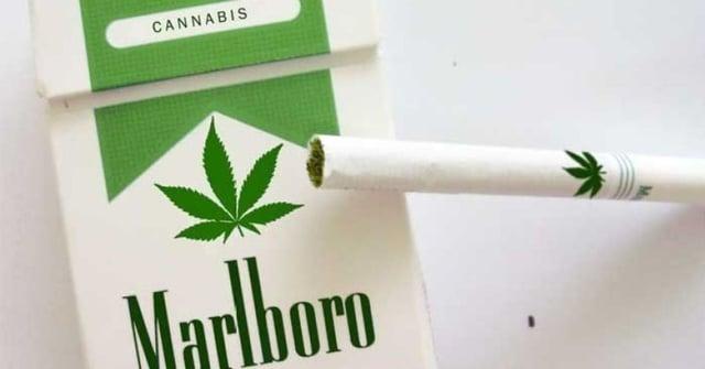 Medical_Cannabis_Packaging-1.jpg