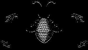 Bush Boys Beehives Logo for Honey Packaging