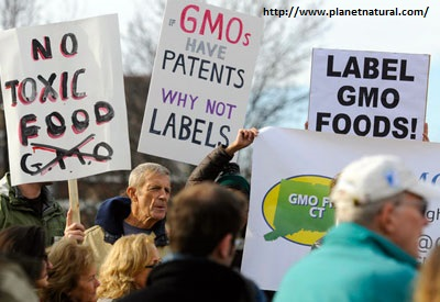 Label_GMO_Foods.jpg